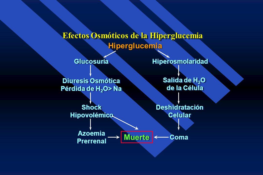 Efectos Osmóticos de la Hiperglucemia
