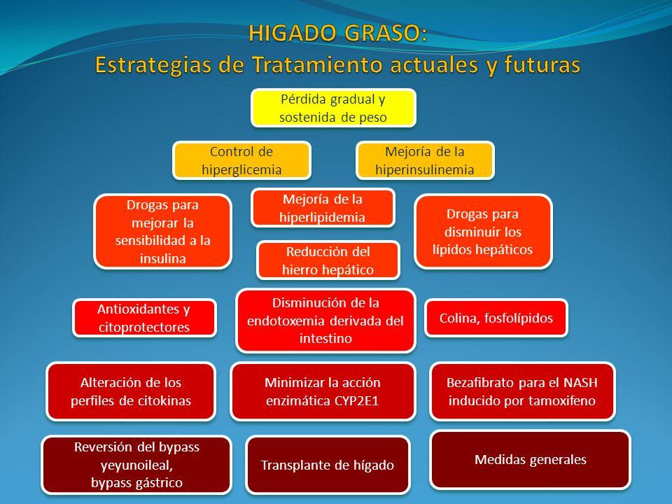 HIGADO GRASO: Estrategias de Tratamiento actuales y futuras