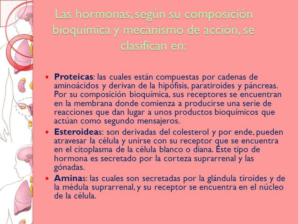 Las hormonas, según su composición bioquímica y mecanismo de acción, se clasifican en: