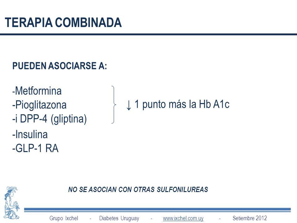 TERAPIA COMBINADA -Pioglitazona -i DPP-4 (gliptina)