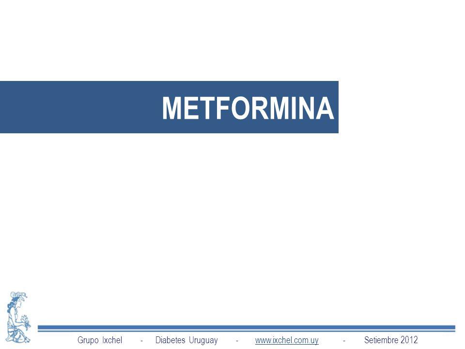 METFORMINA Grupo Ixchel - Diabetes Uruguay - www.ixchel.com.uy - Setiembre 2012.