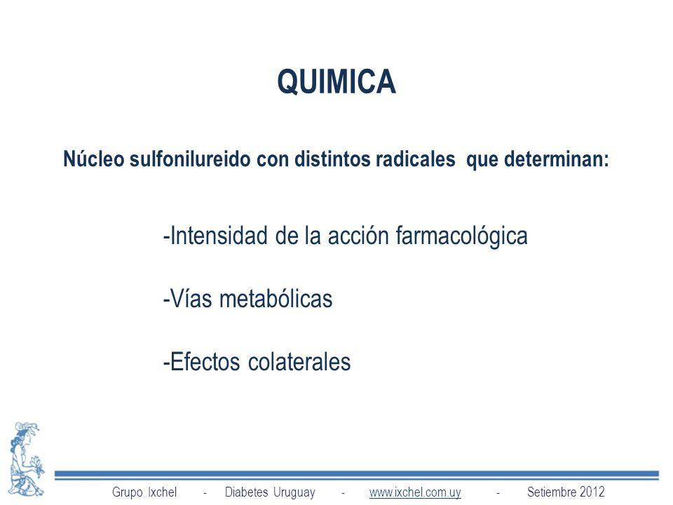 Núcleo sulfonilureido con distintos radicales que determinan: