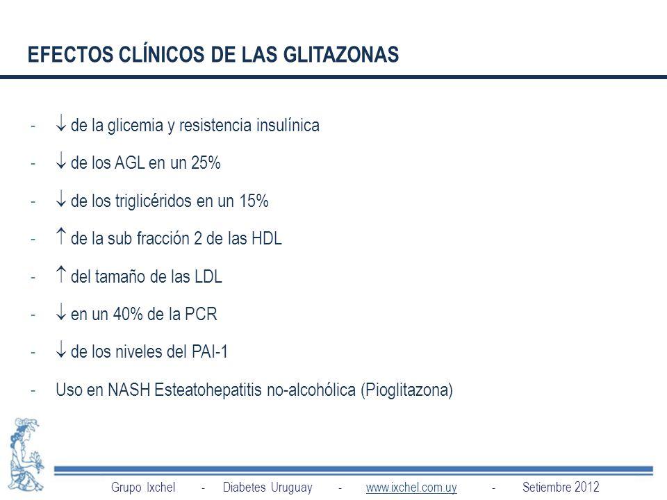 EFECTOS CLÍNICOS DE LAS GLITAZONAS