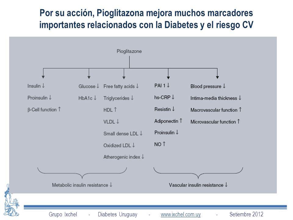 Por su acción, Pioglitazona mejora muchos marcadores importantes relacionados con la Diabetes y el riesgo CV