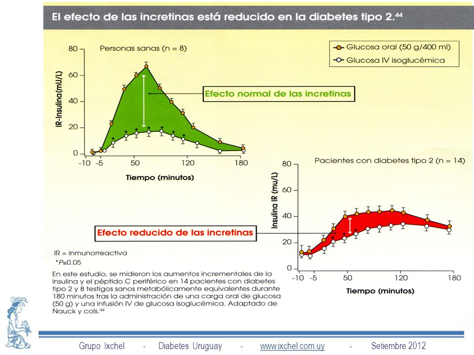Grupo Ixchel - Diabetes Uruguay - www.ixchel.com.uy - Setiembre 2012