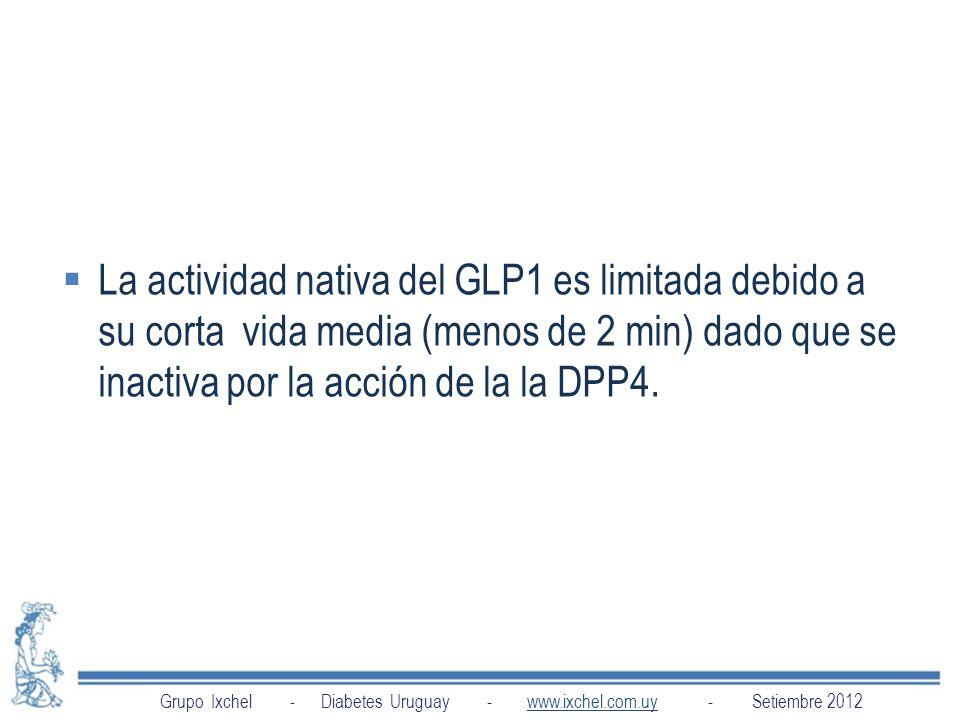 La actividad nativa del GLP1 es limitada debido a su corta vida media (menos de 2 min) dado que se inactiva por la acción de la la DPP4.