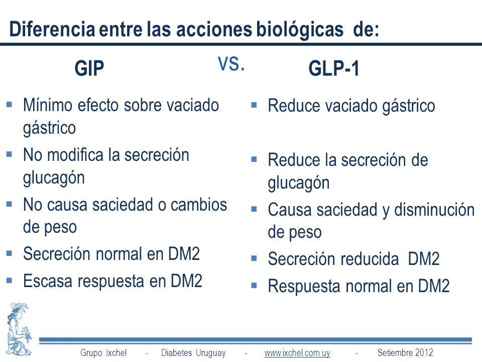 vs. Diferencia entre las acciones biológicas de: GIP GLP-1