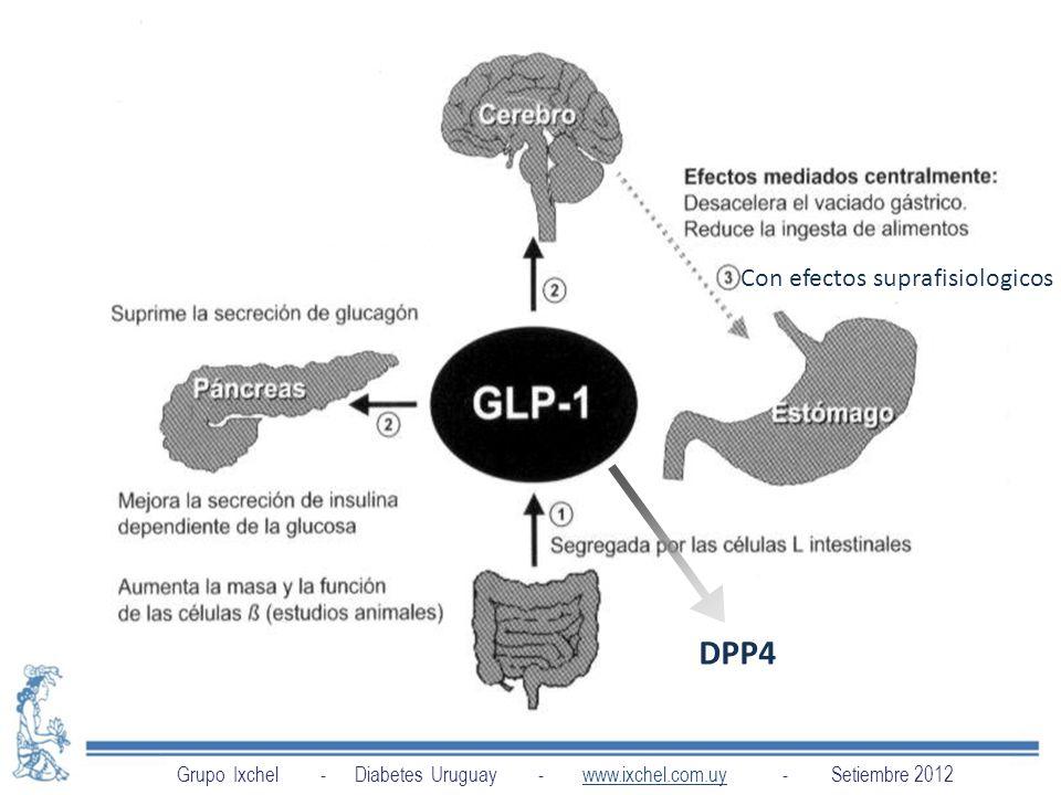 DPP4 Con efectos suprafisiologicos
