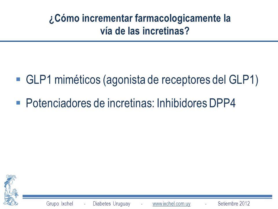 ¿Cómo incrementar farmacologicamente la vía de las incretinas