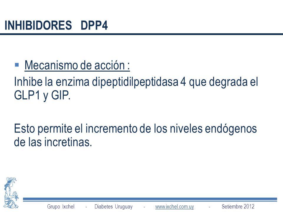 Inhibe la enzima dipeptidilpeptidasa 4 que degrada el GLP1 y GIP.