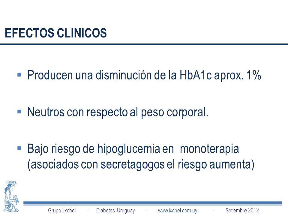 Producen una disminución de la HbA1c aprox. 1%