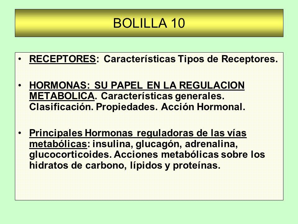 BOLILLA 10 RECEPTORES: Características Tipos de Receptores.