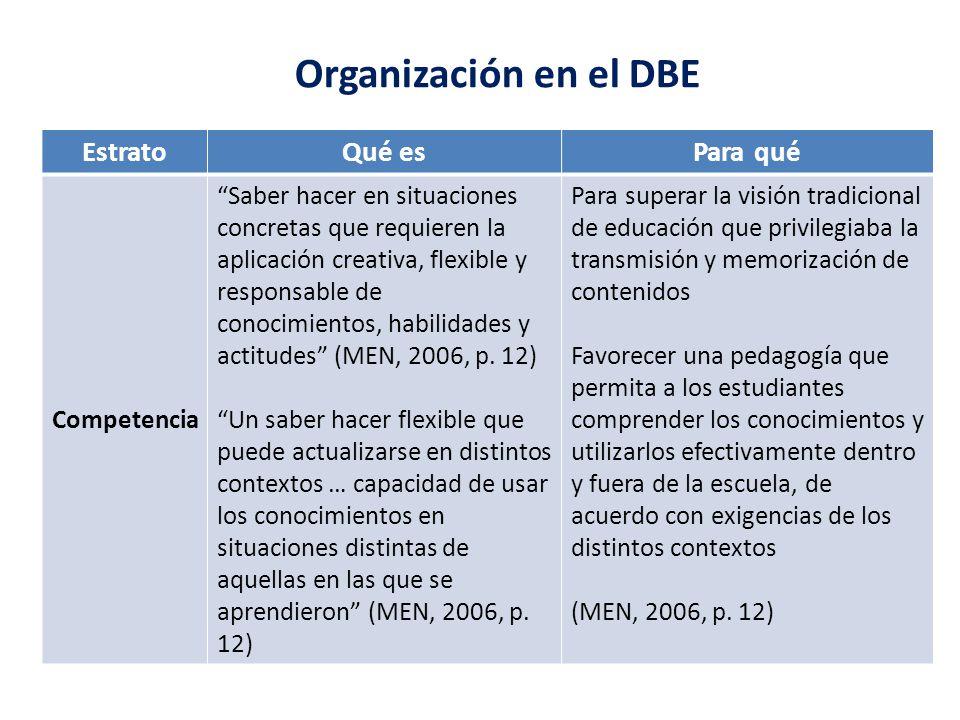 Organización en el DBE Estrato Qué es Para qué Competencia