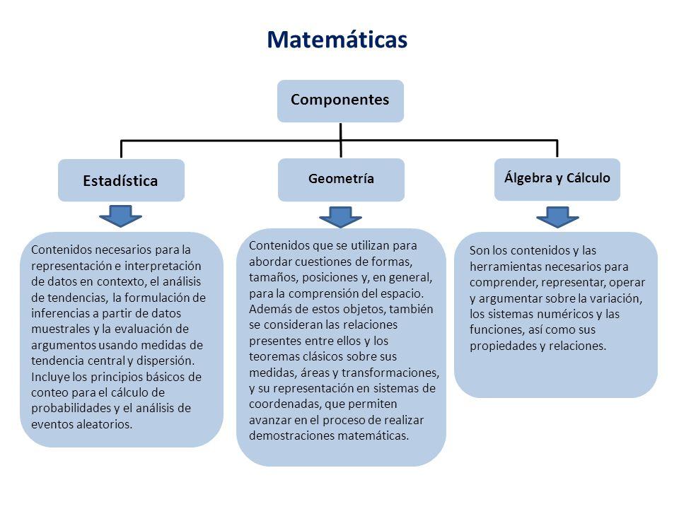 Matemáticas Componentes Estadística Geometría Álgebra y Cálculo