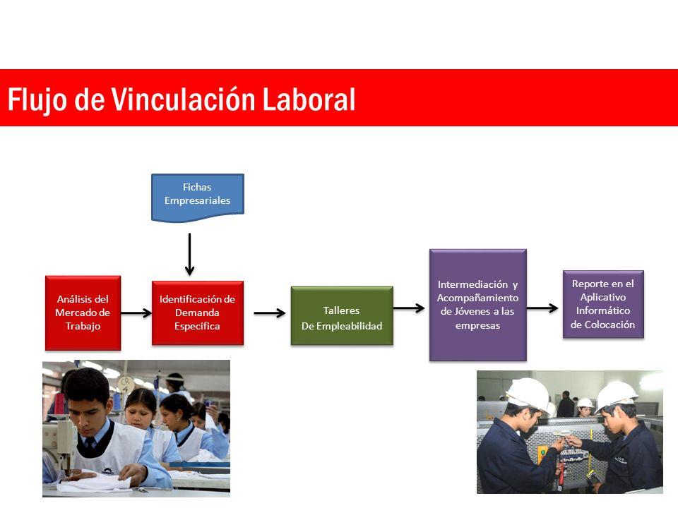 Flujo de Vinculación Laboral