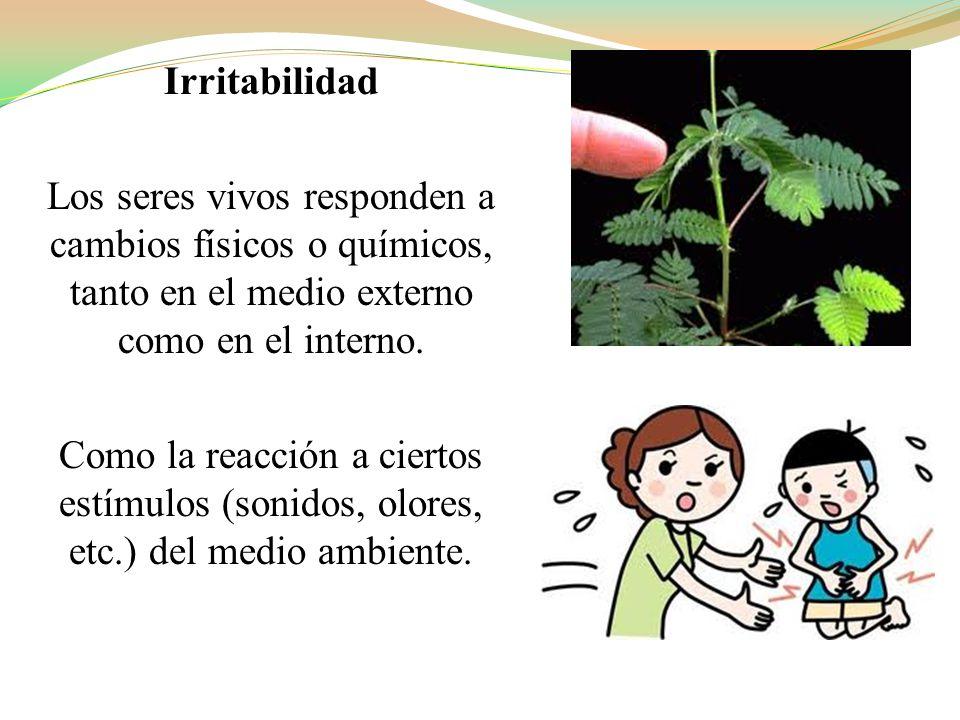 Irritabilidad Los seres vivos responden a cambios físicos o químicos, tanto en el medio externo como en el interno.