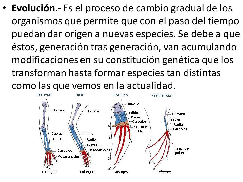 Evolución.- Es el proceso de cambio gradual de los organismos que permite que con el paso del tiempo puedan dar origen a nuevas especies.