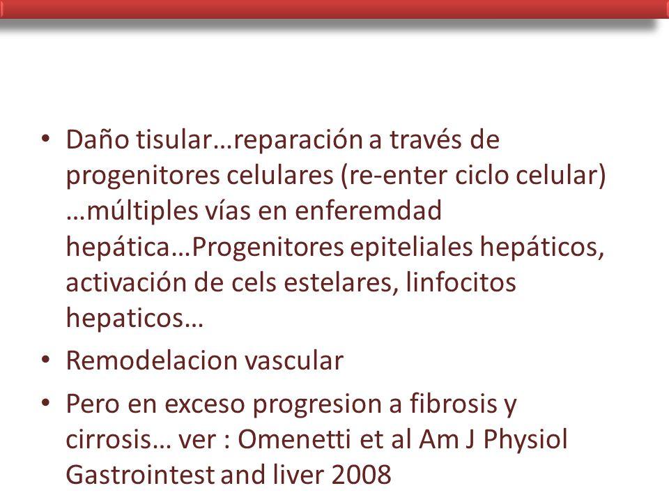 Daño tisular…reparación a través de progenitores celulares (re-enter ciclo celular) …múltiples vías en enferemdad hepática…Progenitores epiteliales hepáticos, activación de cels estelares, linfocitos hepaticos…