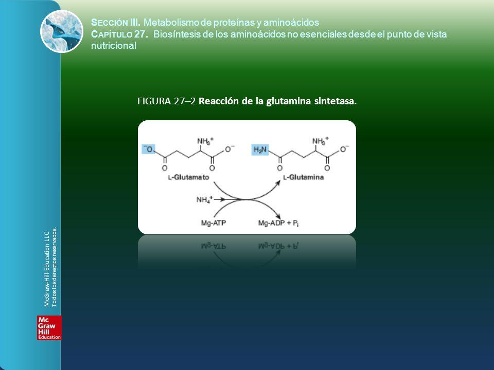 FIGURA 27–2 Reacción de la glutamina sintetasa.