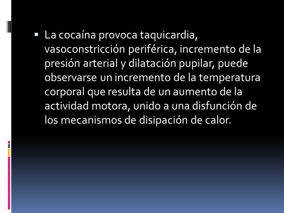La cocaína provoca taquicardia, vasoconstricción periférica, incremento de la presión arterial y dilatación pupilar, puede observarse un incremento de la temperatura corporal que resulta de un aumento de la actividad motora, unido a una disfunción de los mecanismos de disipación de calor.