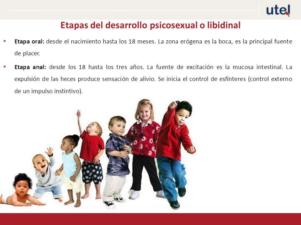 Etapas del desarrollo psicosexual o libidinal
