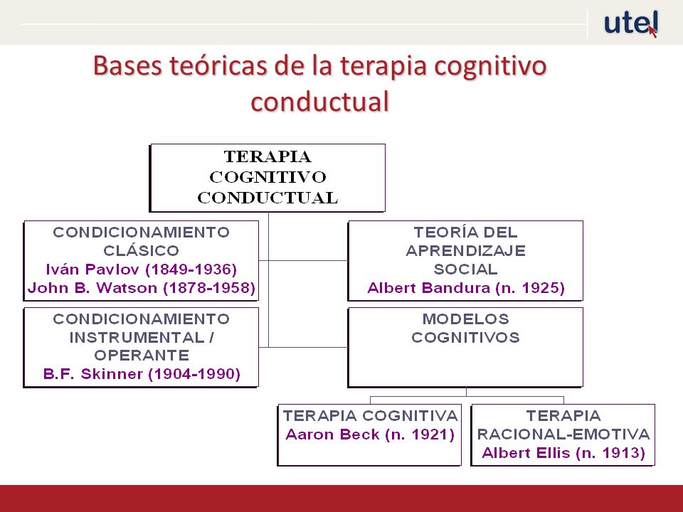 Bases teóricas de la terapia cognitivo conductual