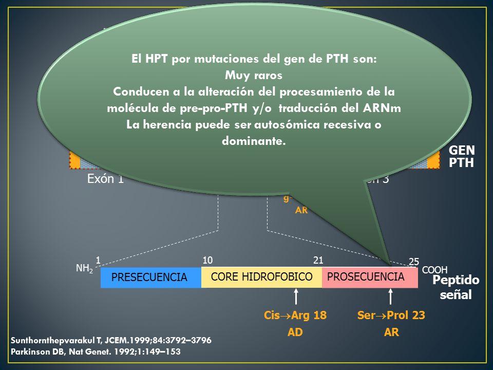 Defecto en la molécula de PTH Gene 11p15.3-15.1