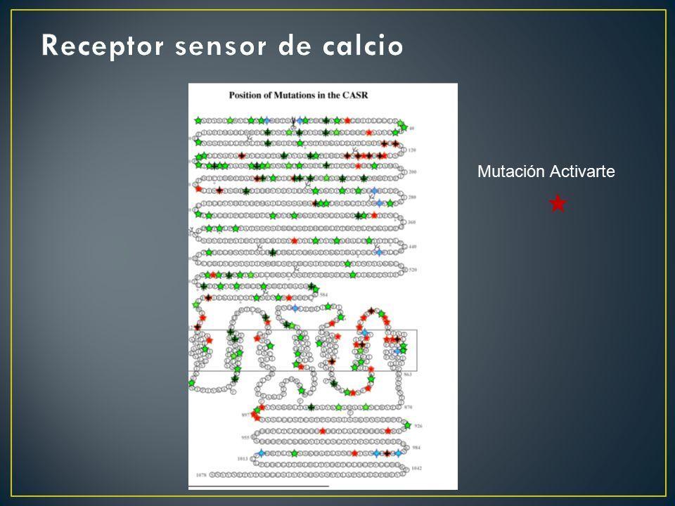 Receptor sensor de calcio