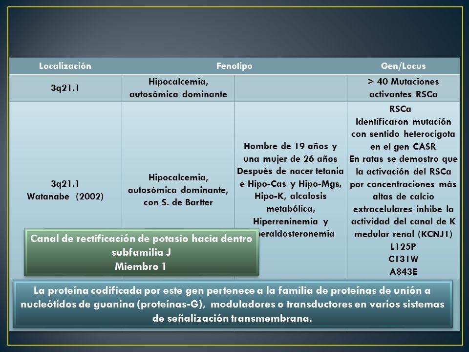 Canal de rectificación de potasio hacia dentro subfamilia J Miembro 1