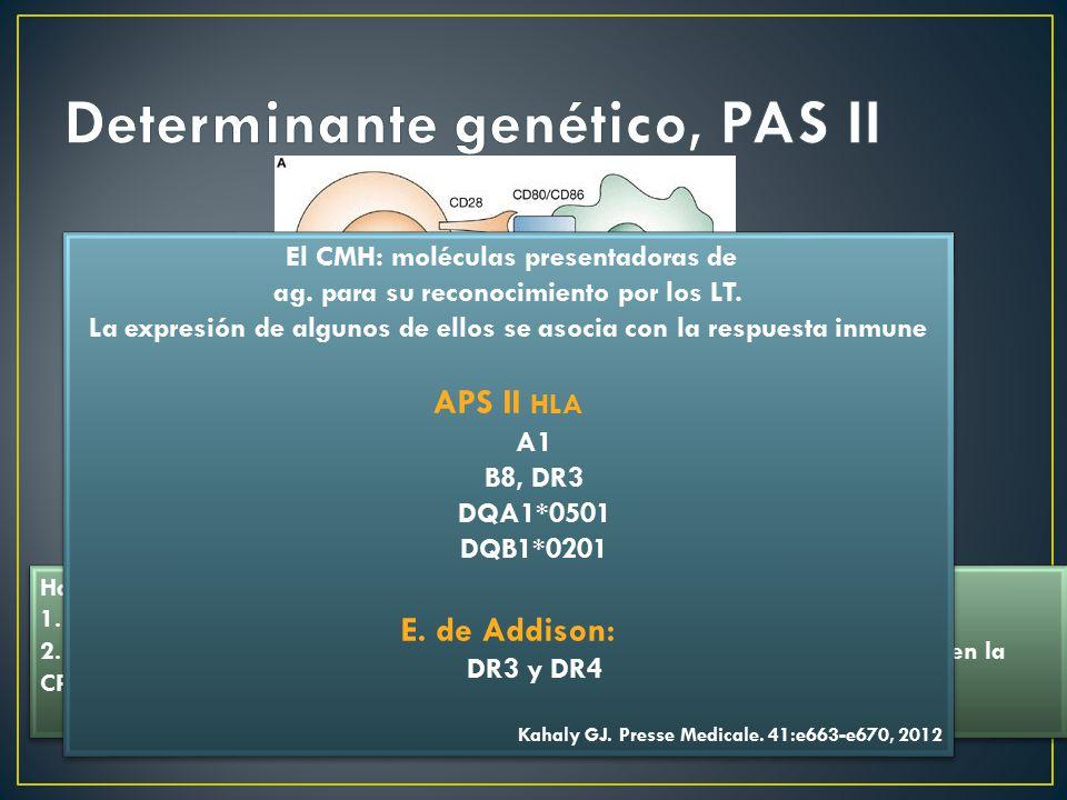 Determinante genético, PAS II
