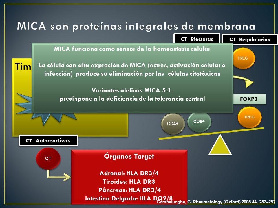 MICA son proteínas integrales de membrana