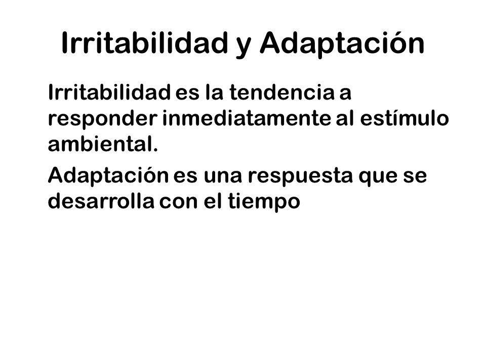 Irritabilidad y Adaptación