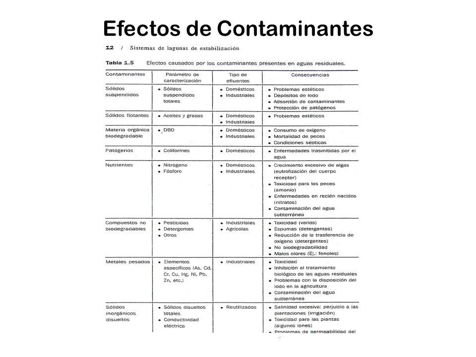 Efectos de Contaminantes