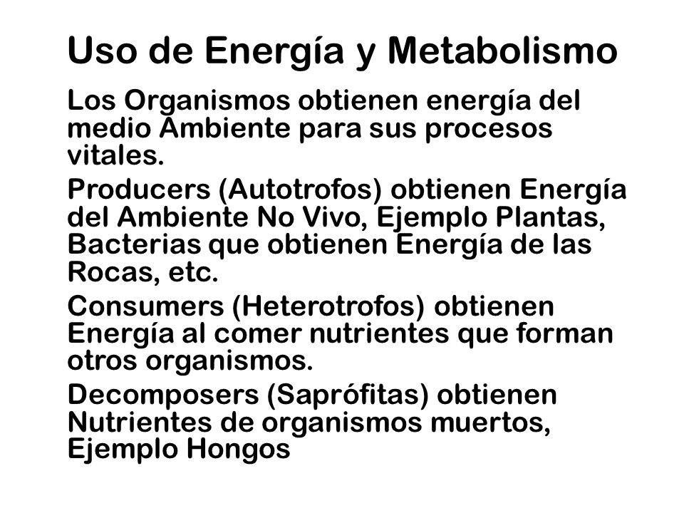 Uso de Energía y Metabolismo