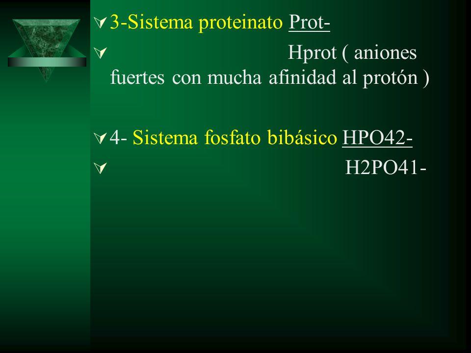 3-Sistema proteinato Prot-