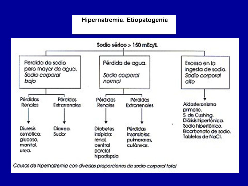 Hipernatremia. Etiopatogenia