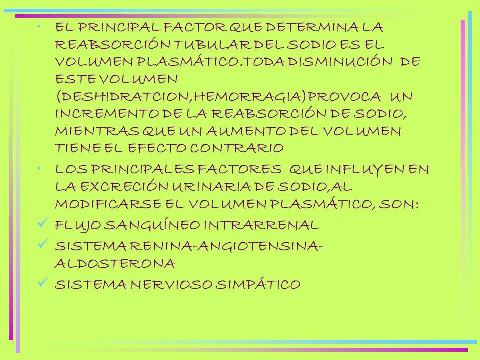 EL PRINCIPAL FACTOR QUE DETERMINA LA REABSORCIÓN TUBULAR DEL SODIO ES EL VOLUMEN PLASMÁTICO.TODA DISMINUCIÓN DE ESTE VOLUMEN (DESHIDRATCION,HEMORRAGIA)PROVOCA UN INCREMENTO DE LA REABSORCIÓN DE SODIO, MIENTRAS QUE UN AUMENTO DEL VOLUMEN TIENE EL EFECTO CONTRARIO