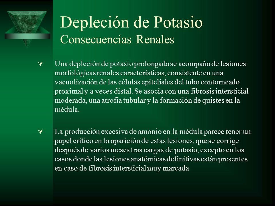 Depleción de Potasio Consecuencias Renales