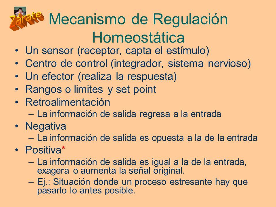 Mecanismo de Regulación Homeostática