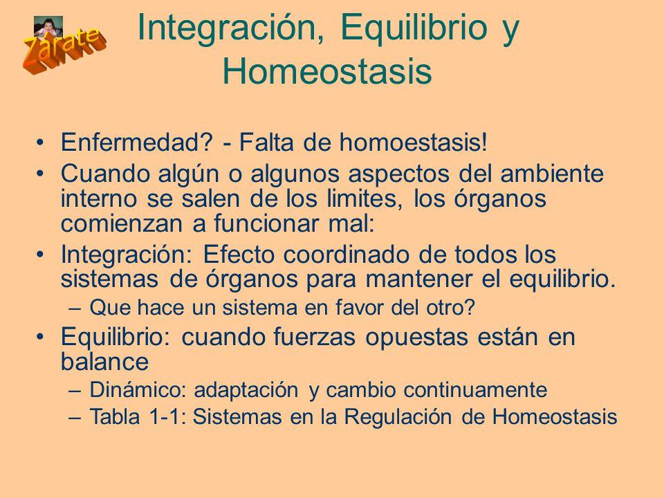 Integración, Equilibrio y Homeostasis