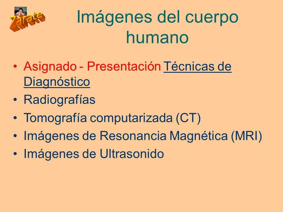 Imágenes del cuerpo humano