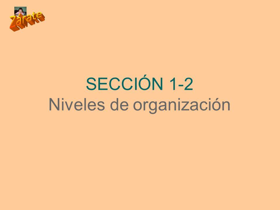 SECCIÓN 1-2 Niveles de organización