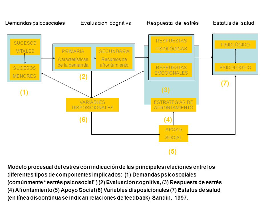 (2) (7) (3) (1) (6) (4) (5) Demandas psicosociales
