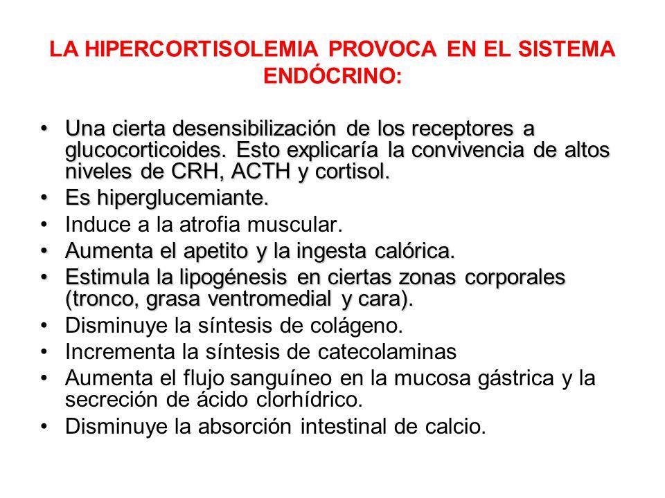LA HIPERCORTISOLEMIA PROVOCA EN EL SISTEMA ENDÓCRINO:
