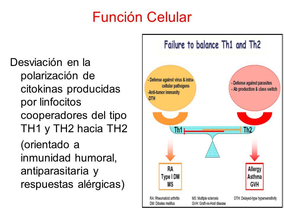 Función Celular Desviación en la polarización de citokinas producidas por linfocitos cooperadores del tipo TH1 y TH2 hacia TH2.