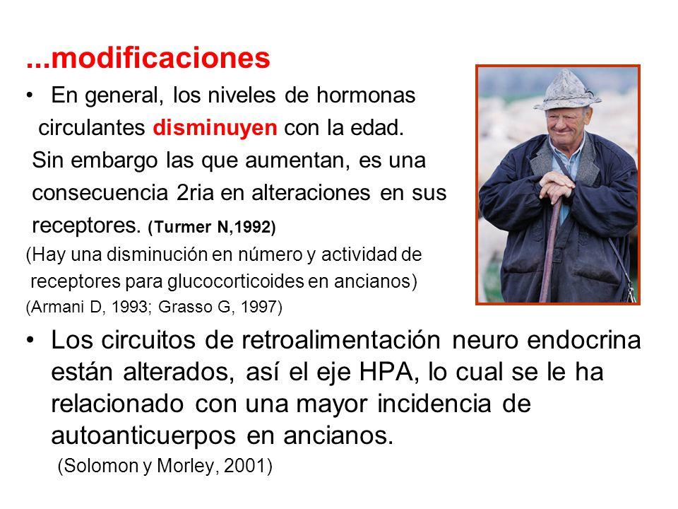 ...modificaciones En general, los niveles de hormonas. circulantes disminuyen con la edad. Sin embargo las que aumentan, es una.