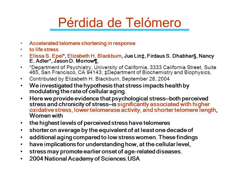 Pérdida de Telómero Accelerated telomere shortening in response. to life stress.