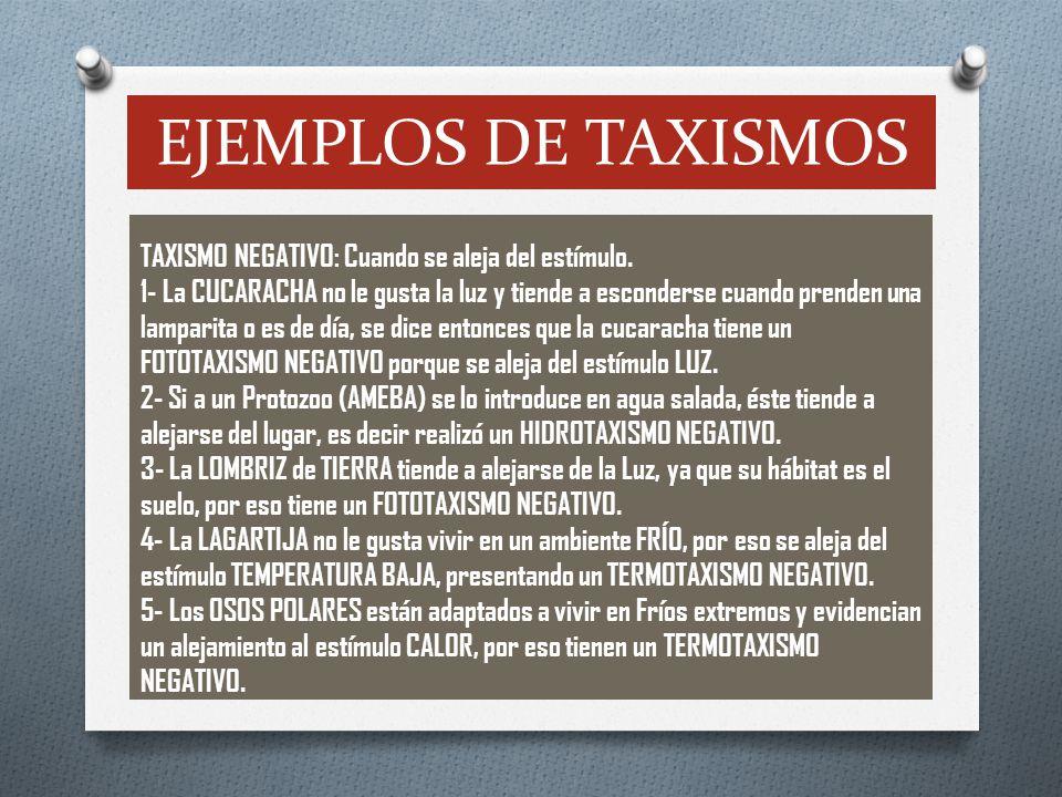 EJEMPLOS DE TAXISMOS