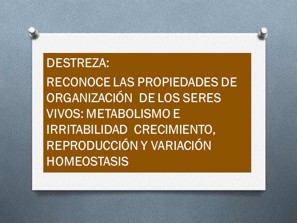 DESTREZA: