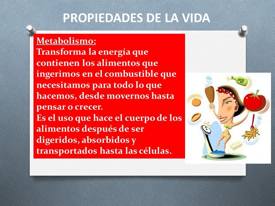 PROPIEDADES DE LA VIDA Metabolismo: